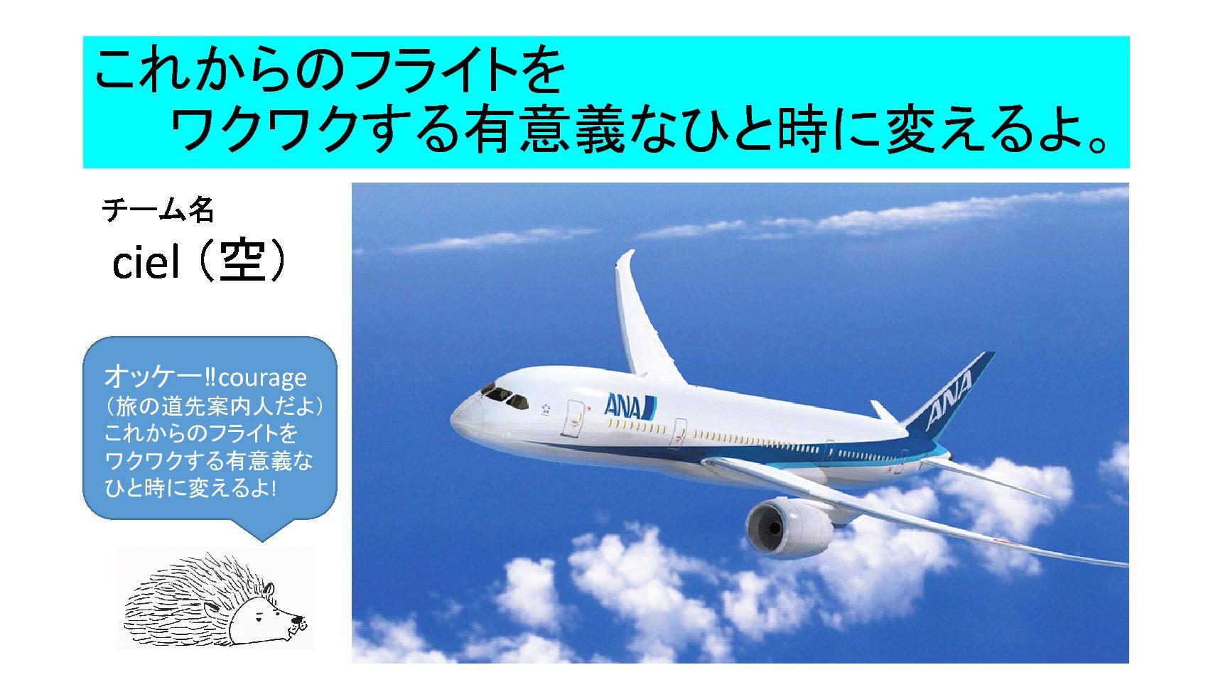 もう一つのチーム名は  ciel(空) ✈️全日空イベント